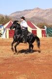 Armand o vaqueiro de canto em seu garanhão preto imagens de stock royalty free