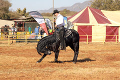 Armand the singing cowboy on his black stallion taking bow Royalty Free Stock Image
