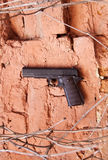Armas de fuego como un potro o pistola Makarov Foto de archivo