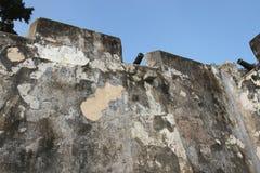 Armas viejos de la pared del fuerte Fotografía de archivo libre de regalías