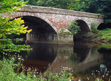 Armathwaite Bridge. Bridge over the river Eden at Armathwaite, Cumbria, UK Royalty Free Stock Images