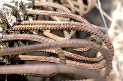 Armature ραβδιά από το σκυρόδεμα Στοκ Φωτογραφία