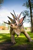 Armatus del Stegosaurus Fotografía de archivo