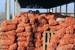 Armazém agricultural Fotos de Stock Royalty Free