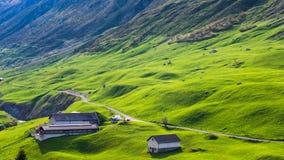 Armazéns entre montes verdes Fotos de Stock