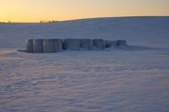 Armazenamento de pacotes da palha em um campo no inverno Fotos de Stock Royalty Free