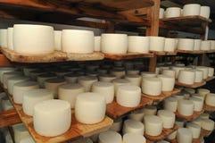 Armazenamento do queijo Imagem de Stock Royalty Free