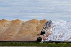 Armazenamento exterior do milho de campo imagem de stock