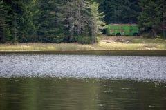 Armazenamento oxidado velho do ônibus no lago da montanha imagens de stock royalty free