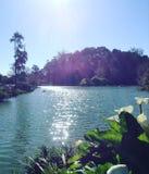 Armazene o lago Foto de Stock