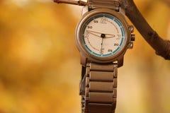 Armbanduhr, die über einer Niederlassung hängt lizenzfreie stockfotografie