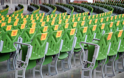 Armchair in the entertainment. Green plastic armchairs in the entertainment Stock Images