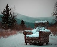 Armchair in the middle of the woods. stock photos
