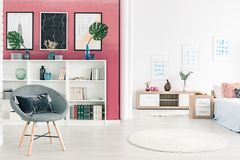 Armchair in open space interior. Leaves on white cabinet against pink wall with posters in open space interior with grey armchair Royalty Free Stock Photos