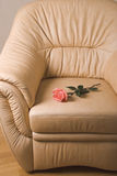 Armchair and rose Stock Image