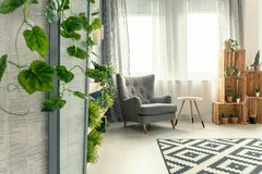 Armchair by the window Stock Photography