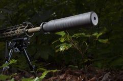 Arme à feu tranquille Photographie stock libre de droits