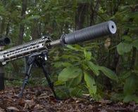 Arme à feu tranquille Photos stock