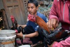 Arme atividades de treinamento do lutador na cidade velha de Semarang Fotos de Stock Royalty Free