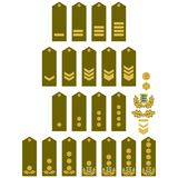 Armed Forces insignia Estonia Royalty Free Stock Image