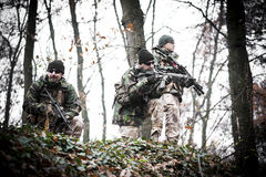 Armed forces. Special forces patrol in woods Royalty Free Stock Images
