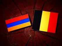 Armeense vlag met Belgische vlag op een geïsoleerde boomstomp Royalty-vrije Stock Afbeelding