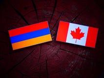 Armeense vlag met Canadese vlag op een geïsoleerde boomstomp Stock Afbeelding