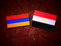 Armeense vlag met Egyptische vlag op een boomstomp Royalty-vrije Stock Afbeelding