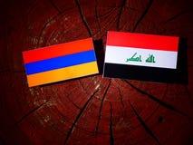 Armeense vlag met Iraakse vlag op een geïsoleerde boomstomp Stock Afbeelding