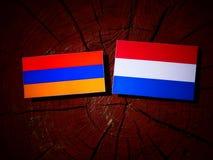 Armeense vlag met Nederlandse vlag op een geïsoleerde boomstomp Royalty-vrije Stock Foto