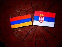 Armeense vlag met Servische vlag op een boomstomp Stock Fotografie