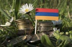 Armeense vlag met stapel geldmuntstukken met gras Stock Foto's