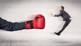 Armen med boxninghandskar sl?r begrepp f?r kontorsarbetare royaltyfri bild