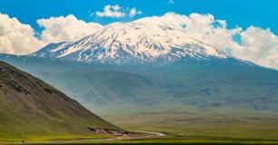 Armenia ararat granice górski indyk wiosny Zdjęcie Stock