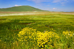 Armenia. Landscape of the mountain valley. Stock Photography