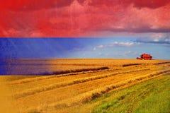 Armenien jordbruk som skördar skördar Arkivbilder