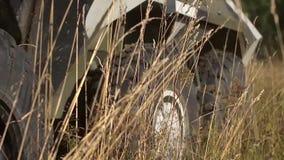 Armerade militärfordonhjul stock video