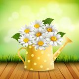 Armful Of Daisy Realistic Composition Stock Photos