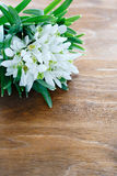 Armful of snowdrops on wooden background Stock Photography