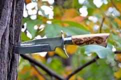 Armi della mischia e coltello di combattimento Fotografia Stock