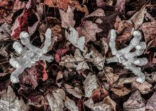 Armi dello scheletro che raggiungono fuori dalle foglie di caduta Fotografia Stock