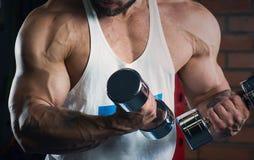 Armi muscolari che fanno il bicipite con le teste di legno nella palestra Uomo con la barba Fotografia Stock