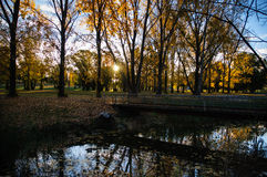 Armidale autumn Royalty Free Stock Photography