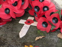 Armistice Day poppies Stock Photography