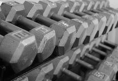 Armoire de poids libre Dumbells Images libres de droits