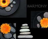 Armonia del collage fotografie stock