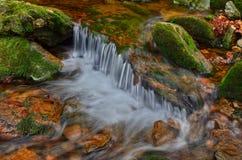Armonia del fiume Immagine Stock
