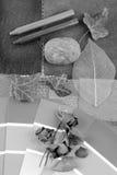 Armonizzazione grigia di colore Fotografie Stock