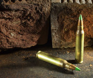 Armor piercing fodder Stock Images