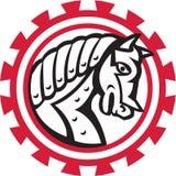 Armor War Horse Head Gear Retro Stock Image
